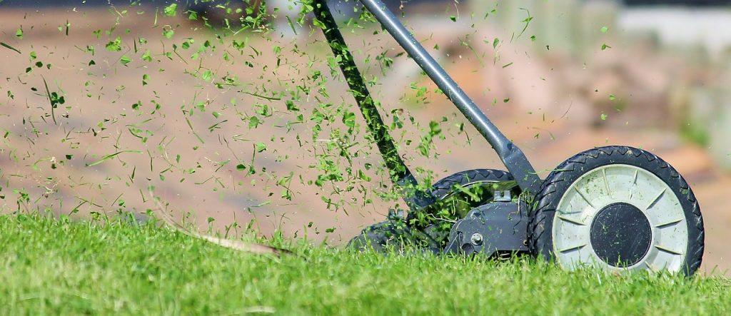 tondre avant l'automne pour récupérer l'herbe fraiche